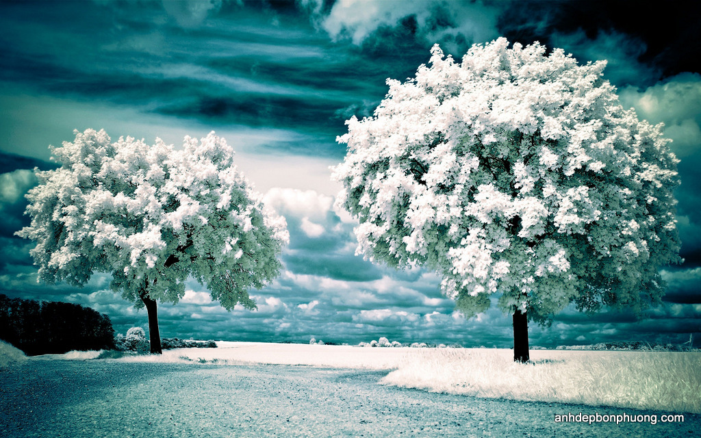 hinh-nen-galaxy-s7-winter-landscape-nature-wallpapers